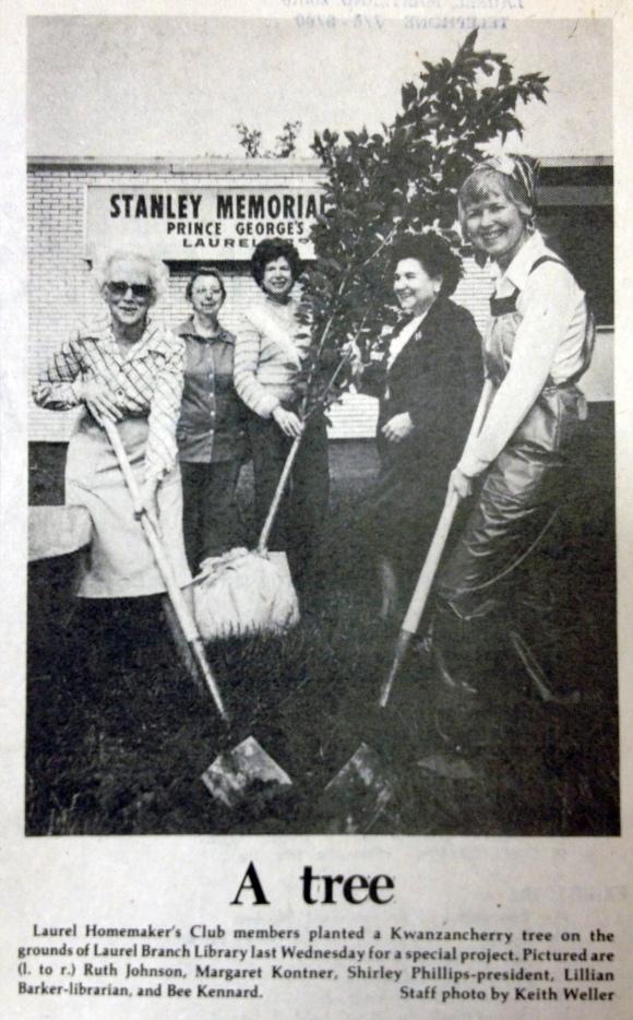 (Laurel Leader, May 14, 1981)